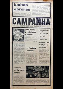 AméricaLee - Campanha 2