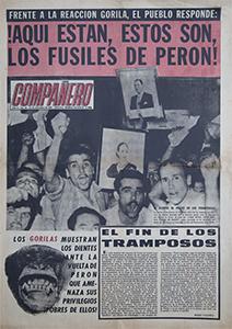 AméricaLee - Compañero 64
